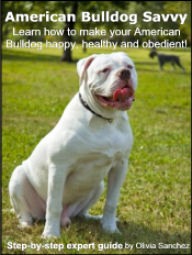 american-bulldog-ebook